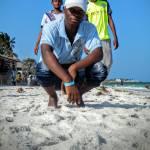 Brian Mosoti Profile Picture