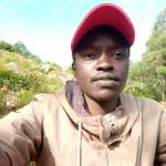 Kennedy kiplimo Profile Picture